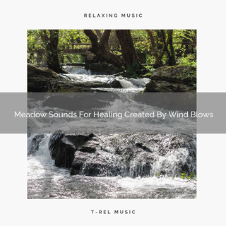 Meadow Sounds For Healing Created By Wind Blows