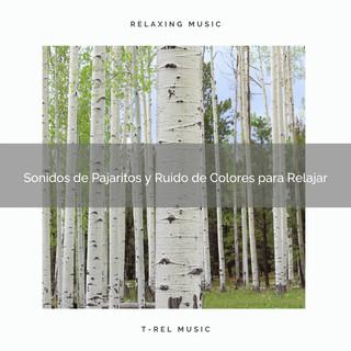 Sonidos De Pajaritos Y Ruido De Colores Para Relajar