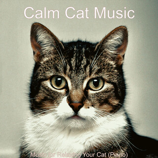 Music For Relaxing Your Cat (Piano)