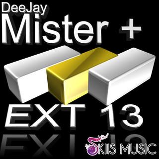 EXT13 V.2
