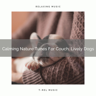 Calming Nature Tunes For Couch, Lively Dogs