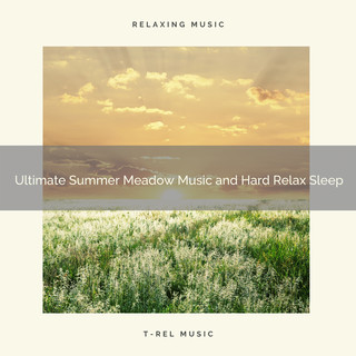 2020 Best:Ultimate Summer Meadow Music And Hard Relax Sleep