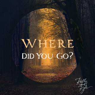 Where Did You Go ?