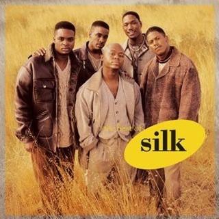 美聲精選 (The Best Of Silk)