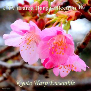 J-TV drama Harp Collection 花 (J-TV Drama Harp Collection Hana)