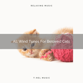 All Wind Tunes For Beloved Cats