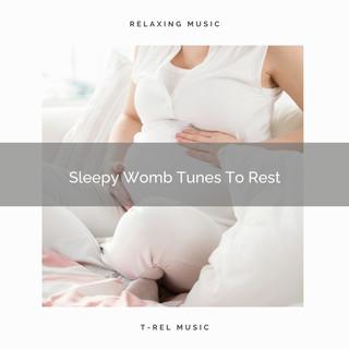 Sleepy Womb Tunes To Rest