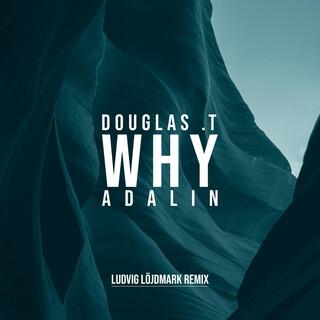 Why (Ludvig Löjdmark Remix)
