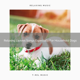 Relaxing Leaves Songs Especially For Household Dogs