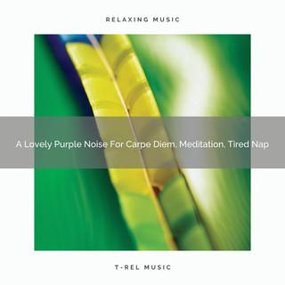 A Lovely Purple Noise For Carpe Diem, Meditation, Tired Nap