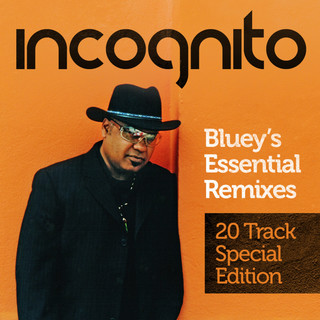 Bluey's Essential Remixes (20 Track Special Edition)