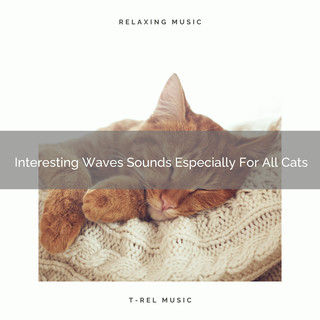 Interesting Waves Sounds Especially For All Cats