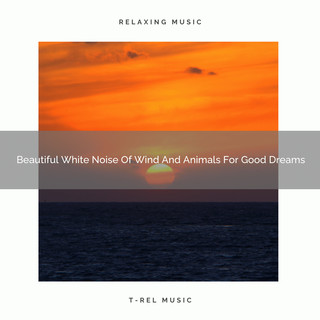 Beautiful White Noise Of Wind And Animals For Good Dreams