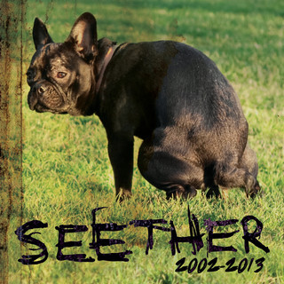 Seether:2002 - 2013