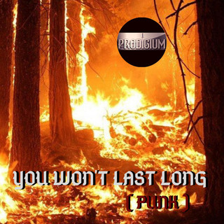 You Won't Last Long (Punk)
