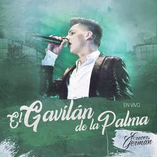 El Gavilán De La Palma (En Vivo)