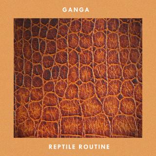 Reptile Routine