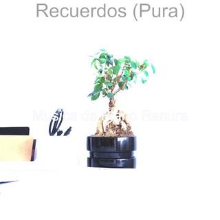 Recuerdos (Pura)