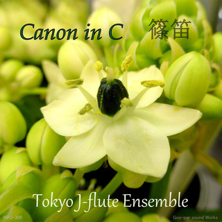 カノン in C shinobue version