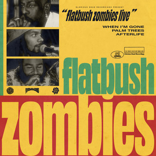 Flatbush Zombies Live - 8 / 13 / 20 - Los Angeles, CA