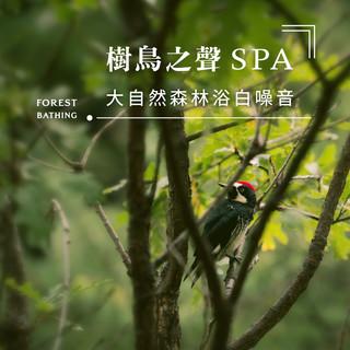 樹鳥之聲SPA.大自然森林浴白噪音 (Forest Bathing)