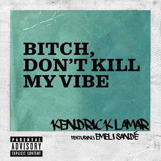 Bitch, Don\'t Kill My Vibe Remix
