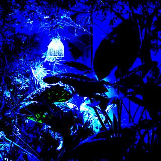 Jardín Azul