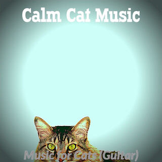 Music For Cats (Guitar)