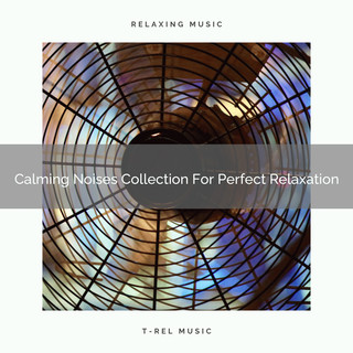Calming Noises Collection For Perfect Relaxation