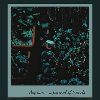 A Journal of Travels