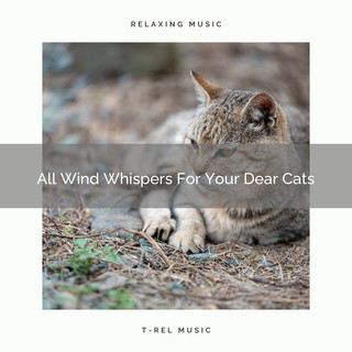 All Wind Whispers For Your Dear Cats