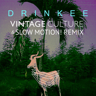Drinkee (Vintage Culture & Slow Motion ! Remix)