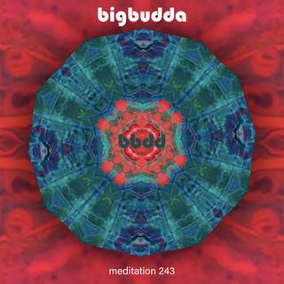 Meditation 243