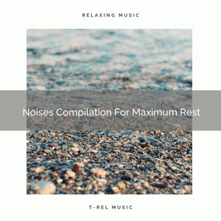 Noises Compilation For Maximum Rest