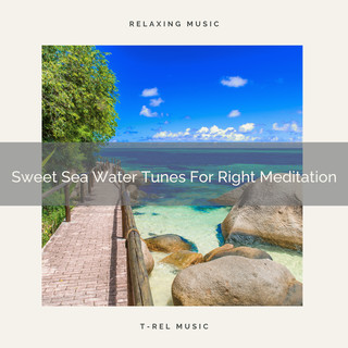Sweet Sea Water Tunes For Right Meditation