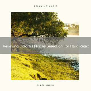 Relieving Colorful Noises Selection For Hard Relax