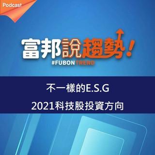 不一樣的E.S.G 2021科技股投資方向