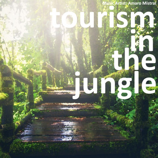 Tourism In The Jungle