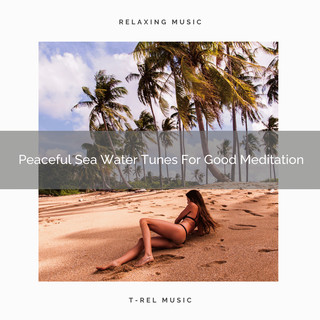 Peaceful Sea Water Tunes For Good Meditation