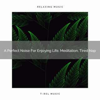 A Perfect Noise For Enjoying Life, Meditation, Tired Nap