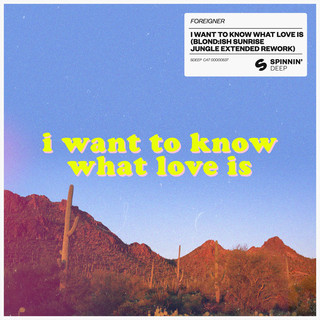 I Want To Know What Love Is (BLOND:ISH Sunrise Jungle Extended Rework)