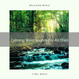 Calming Wind Sounds For All Child