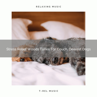 Stress Relief Woods Tunes For Couch, Dearest Dogs
