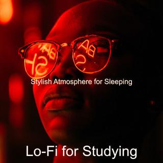 Stylish Atmosphere For Sleeping