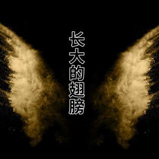 長大的翅膀