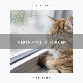 Nature Songs For Your Cats