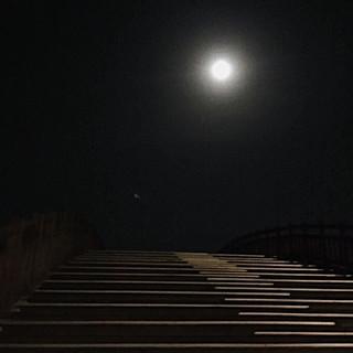 Another night / 정화랑