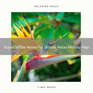 Super White Noise For Bizarre Relax Midday Nap