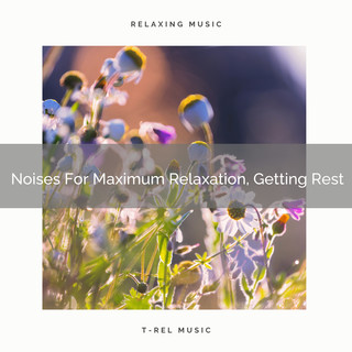 Noises For Maximum Relaxation, Getting Rest