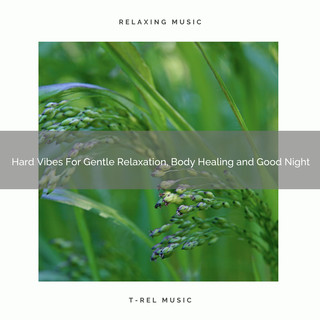 Hard Vibes For Gentle Relaxation, Body Healing And Good Night